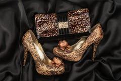 Borsa del leopardo e scarpe del leopardo Fotografia Stock Libera da Diritti