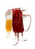 Borsa di sangue e di plasma su bianco Immagini Stock