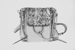 Borsa o borsa del cuoio della pelle di serpente e della catena dorata Immagini Stock