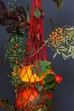 Borsa rossa della maglia, vecchio reticolato con i tipi differenti sani organici freschi di zucche, fondo scuro, commercio, vendi Immagini Stock