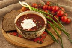 Borsch σούπας με την ξινή κρέμα στοκ φωτογραφία με δικαίωμα ελεύθερης χρήσης