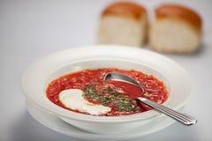 Borsch σούπας Στοκ εικόνες με δικαίωμα ελεύθερης χρήσης
