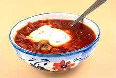 Borsch. Pot of ukrainian borsch and cream with spoon royalty free stock image
