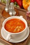 Borsch. Delicious borsch in a white dish on a wooden table royalty free stock image