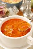 Borsch. Closeup of borsch, russian national red soup royalty free stock image