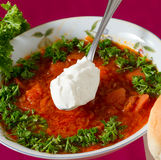 Borsch Royalty Free Stock Photo
