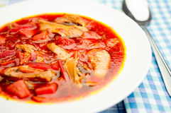 Borsch Stock Photography