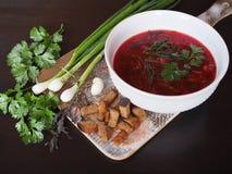 Borsch caldo della minestra con le cipolle verdi e l'aglio immagini stock