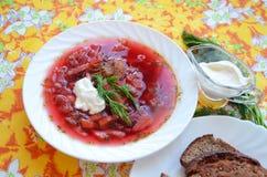 Borsch caliente ucraniano tradicional de la sopa Fotografía de archivo