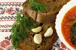 Borsch con pan negro Imagen de archivo libre de regalías