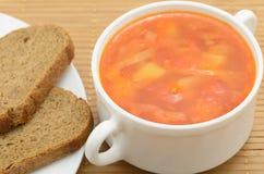 borsch della minestra con il pane di segale Fotografie Stock Libere da Diritti