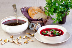 Borsch with dumplings Royalty Free Stock Photos