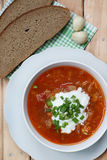 Borsch with greens and bread Stock Images