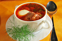 Borsch with meat and haricot Royalty Free Stock Photography
