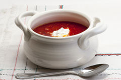 Borsch national ukrainien et russe de cuisine Photo stock