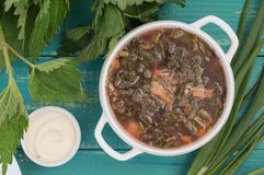 Borsch from a nettle on  wooden table. Top view Stock Images