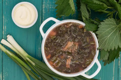 Borsch from a nettle on  wooden table. Top view. Borsch from a nettle on a wooden table. Top view Royalty Free Stock Photo