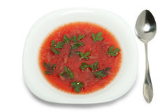 Borsch in plate Royalty Free Stock Image