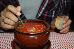 Borsch in the pot Royalty Free Stock Image