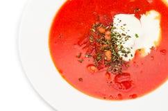 Borsch rosso con panna acida immagini stock