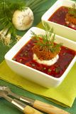 Borsch soup. With fresh garlic Royalty Free Stock Photos