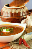 Borsch, soup from a beet. And cabbage with tomato sauce. Ethnic cuisine royalty free stock photos