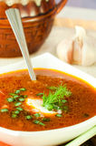 Borsch, soup from a beet. And cabbage with tomato sauce. An onion with garlic royalty free stock photography
