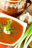 Borsch, soup from a beet and cabbage. An onion wit. Borsch, soup from a beet and cabbage with tomato sauce. An onion with garlic stock photography