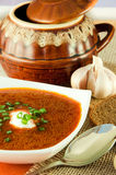 Borsch, soup from a beet and cabbage with tomato. Sauce. Ethnic cuisine royalty free stock photography