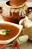 Borsch, soup from a beet and cabbage with tomato s. Auce. Ethnic cuisine royalty free stock photo