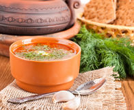 Borsch, soup from a beet. And cabbage with tomato sauce. An onion with garlic royalty free stock photo