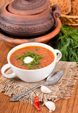 Borsch, soup from a beet and cabbage. With tomato sauce. An onion with garlic royalty free stock photo