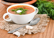 Borsch, soup from a beet. And cabbage with tomato sauce. An onion with garlic stock photo