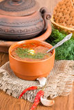 Borsch, soup from a beet. And cabbage with tomato sauce. An onion with garlic stock photography