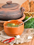 Borsch, soup from a beet and cabbage. With tomato sauce. An onion with garlic stock image