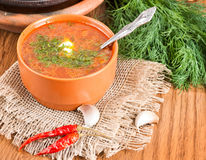 Borsch, soup from a beet and cabbage. With tomato sauce. An onion with garlic royalty free stock images