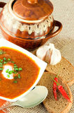 Borsch, soup from a beet. Ethnic cuisine. Borsch, soup from a beet and cabbage with tomato sauce. Ethnic cuisine royalty free stock photo