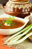 Borsch, soup from a beet . An onion with garlic. Borsch, soup from a beet and cabbage with tomato sauce. An onion with garlic stock images