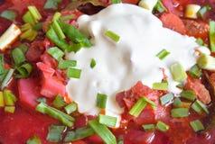 Borsch soup close up. Stock Photos