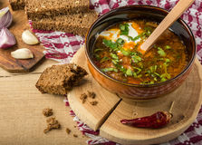 Borsch-soup with sour cream and bread. Tasty and nutritious borsch-soup with meat, potatoes, cabbage, tomatoes, beans, sour cream, parsley, onion, garlic, dark stock images