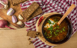 Borsch-soup with sour cream and bread. Top view. Tasty and nutritious borsch-soup with meat, potatoes, cabbage, tomatoes, beans, sour cream, parsley, onion royalty free stock photos