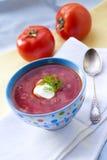 Borsch - soupe ukrainienne traditionnelle à betteraves et à chou Photo libre de droits