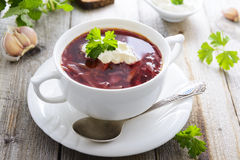 Borsch - traditional russian beetroot soup Stock Image