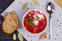 Borsch. Traditional Russian and Ukrainian vegetable soup. Top vi royalty free stock photos