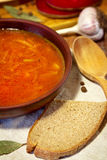Borsch traditionnel ukrainien Photos libres de droits