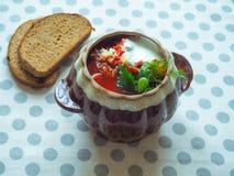 Borsch tradizionale ucraino Minestra rossa vegetariana russa in ciotola bianca Immagini Stock