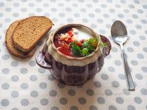 Borsch tradizionale ucraino Minestra rossa vegetariana russa in ciotola bianca Fotografia Stock