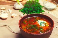 Borsch ucraino tradizionale, minestra della bietola rossa, borshch con la barbabietola, immagine stock libera da diritti
