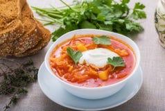 Borsch vegetariano Immagini Stock