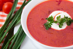 Borsch in a white dish Stock Photos